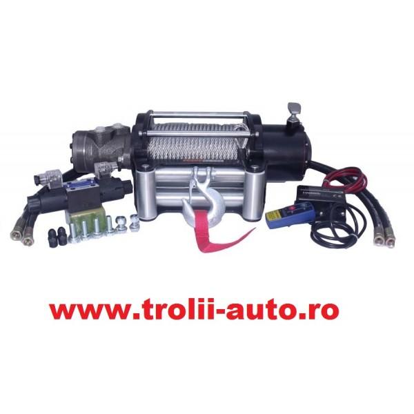 Troliu auto Hidraulic 12000lbs Visoli